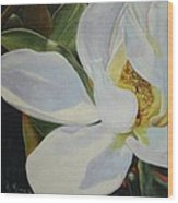 Oil Painting - Sydney's Magnolia Wood Print