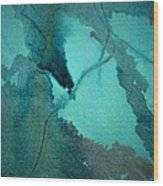 Oil Spill Deep Within The Heart Of The Gulf Wood Print