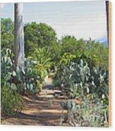 Ojai Desert Garden Wood Print