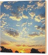 Okavango Delta Sunset Wood Print