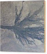 Okavango Wood Print