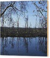 Okefenokee Reflection Wood Print