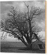Oklahoma Cellar Wood Print