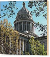 Oklahoma City Capitol In The Spring Wood Print