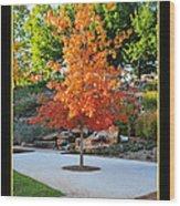 Oklahoma Fall Wood Print