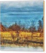 Oklahoma Hay Rolls Photo Art 03 Wood Print