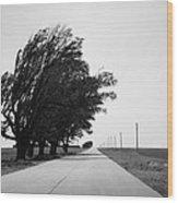 Oklahoma Route 66 2012 Bw Wood Print