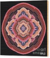 Old Apple Mandala Wood Print