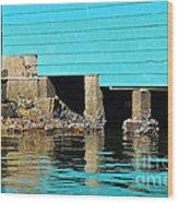 Old Aqua Boat Shed With Aqua Reflections Wood Print