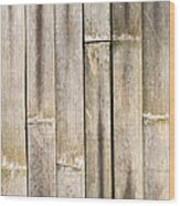Old Bamboo Fence Wood Print