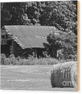 Barn In Kentucky No 84 Wood Print