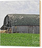 Old Barn And Round Bales Wood Print