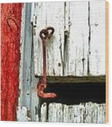 Old Barn Door Hook Wood Print by Julie Dant