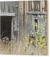 Old Barn In Fall Maine Wood Print