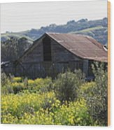 Old Barn In Sonoma California 5d22232 Wood Print
