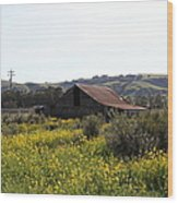 Old Barn In Sonoma California 5d22234 Wood Print