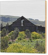 Old Barn In Sonoma California 5d22235 Wood Print by Wingsdomain Art and Photography