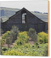 Old Barn In Sonoma California 5d22236 Wood Print