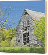 Old Barn In Spring Maine Wood Print
