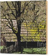 Old Barn Wood Print by Ron Sanford