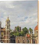 Old Basilica Of Guadalupe Wood Print