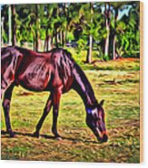 Old Bay Horse Wood Print