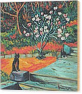 Old Bear Cat And Blooming Magnolia Tree Wood Print