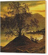 Old Birch Tree At The Sognefjord Wood Print