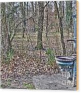 Old Blue Fountain Wood Print