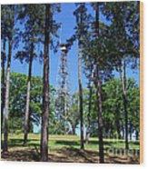 Old Bodcau Fire Tower In Louisiana Wood Print