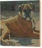 Old Boxer Wood Print