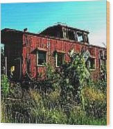 Old Caboose Wood Print by Julie Dant
