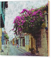 Old Cartagena 2 Wood Print
