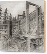 Old Cattle Ramp Wood Print