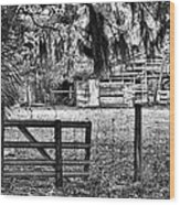 Old Chisolm Island Barn Wood Print