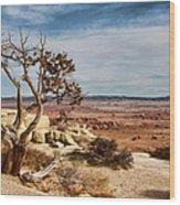 Old Desert Cypress Struggles To Survive Wood Print