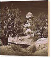 Old Desert Tree Number Three Wood Print