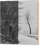 Old Door And Tree Wood Print by William Jobes