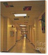 Clare Elementary School Hall Wood Print
