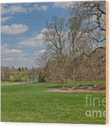 Old Elm Haverford College Wood Print by Kay Pickens