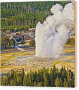 Old Faithful From Observation Point Wood Print