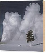3m09137-02-old Faithful Geyser 2 Wood Print