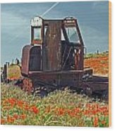 Old Farm Equipment Wood Print