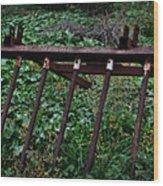Old Farm Machinery - Series II Wood Print