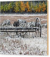 Old Farm Rake Wood Print