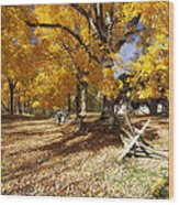Old Farmroad With Autumn Colors Wood Print