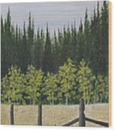 Old Fences Wood Print