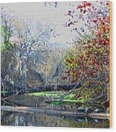 Old Florida Along The Sante Fe River Wood Print