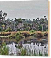 Old Florida Waterway Wood Print