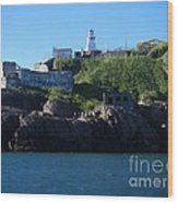 Old Fort Amherst By Barbara Griffin Wood Print